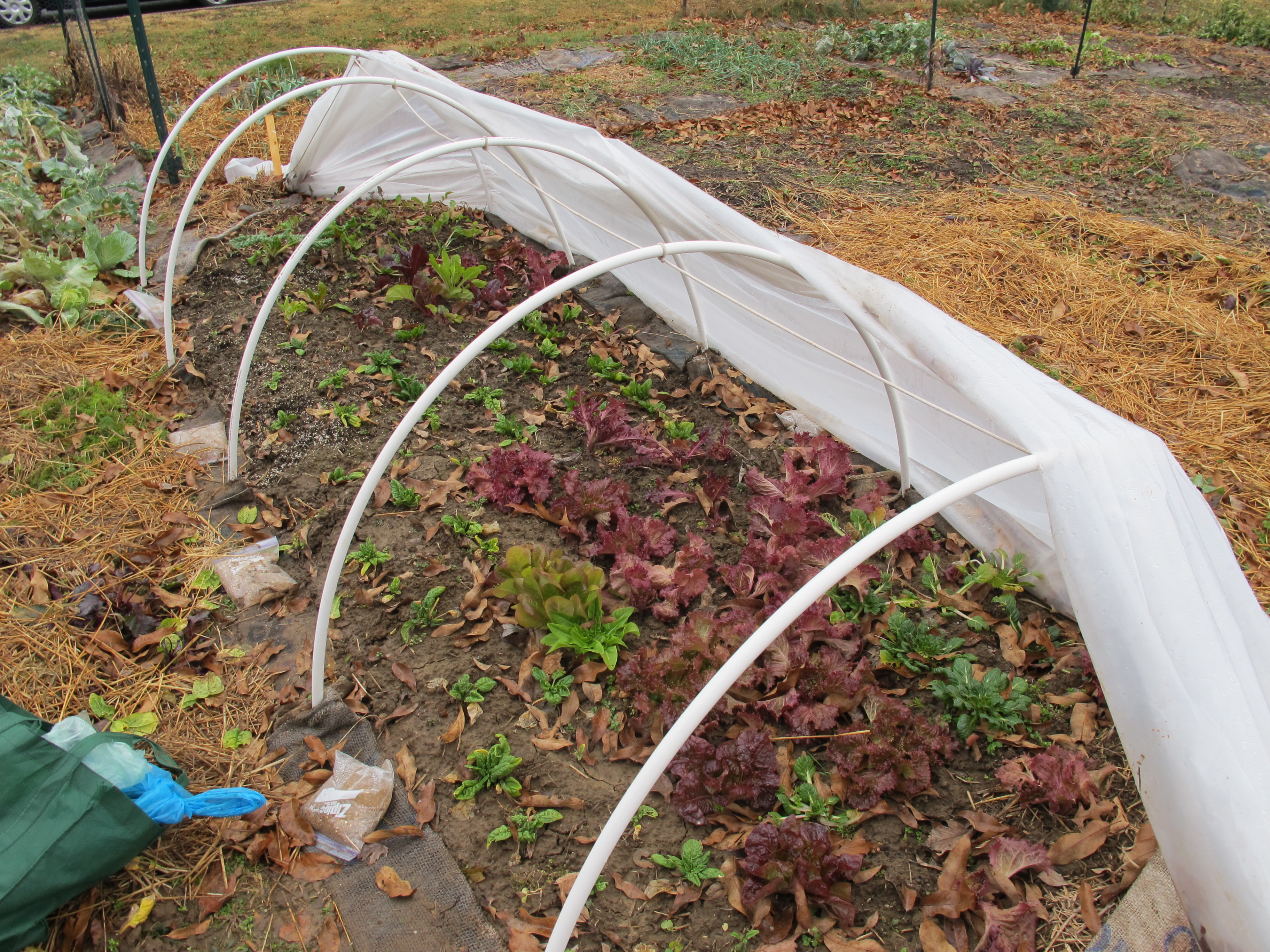 Greenhouse Climate Control : Low Tunnel Clear Plastic 0.8 mil (6 ...