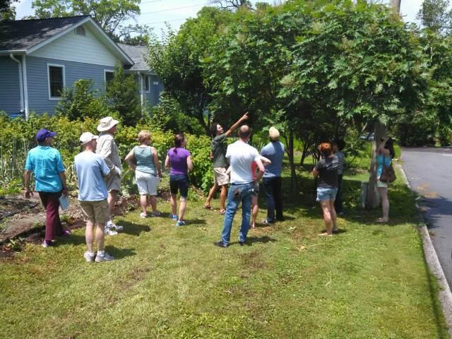 IMG_garden tour